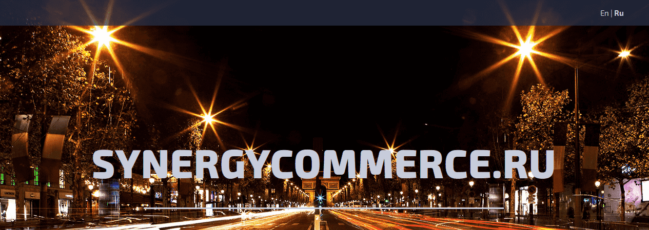 Synergy open source solution based on Spreecommerce